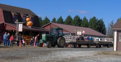 Delaware Christmas Tree Growers Association - Coleman's Christmas ...